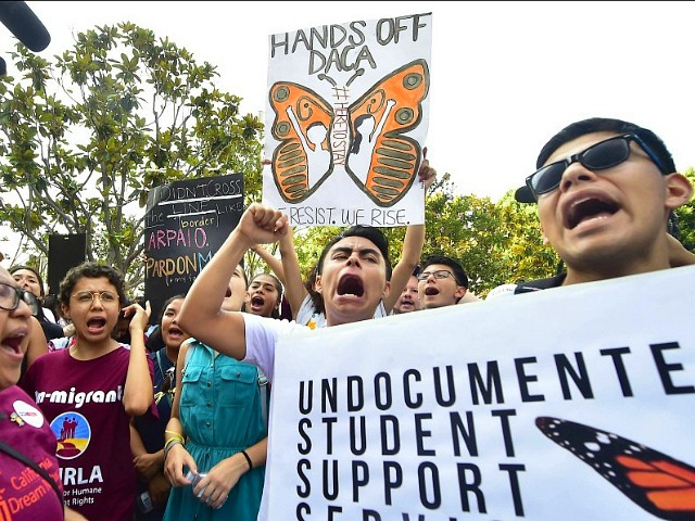 Politico: Democrats' DACA Amnesty Stalls amid Political Fear of Migrant Crime