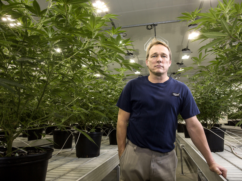 'We were experiencing headwinds' — Canopy Growth stock heads south on poor sales ramp-up