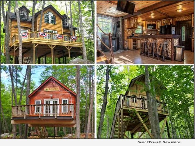 news:-win-entire-treehouse-resort-for-just-$99-and-one-photo!