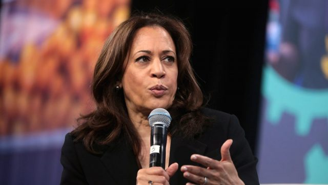 kamala-harris:-'trump-has-done-more-to-inflame-domestic-terrorism-than-confront-it'