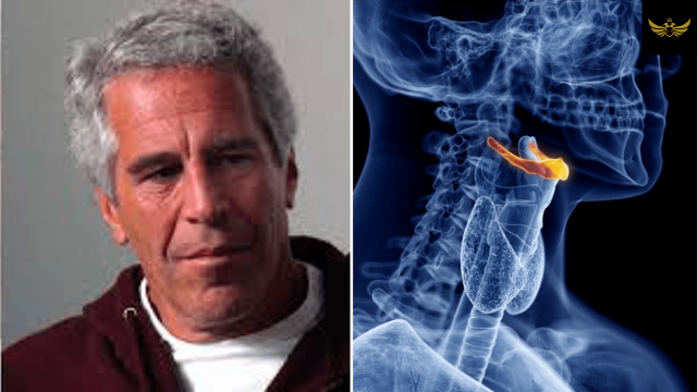 epstein-autopsy-and-cement-mixers-on-orgy-island-(video)