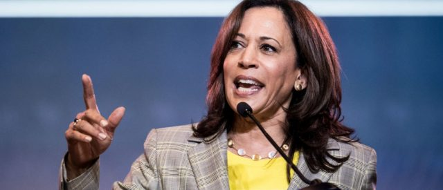 kamala-harris-replies-'well-said'-to-supporter-who-calls-trump-'mentally-retarded,'-later-claims-she-didn't-hear-it