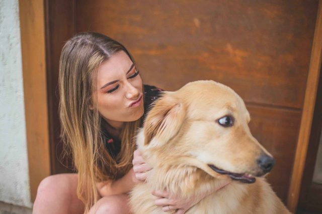 dogs-in-this-state-infected-with-bacterial-disease-that-can-spread-to-humans,-officials-say