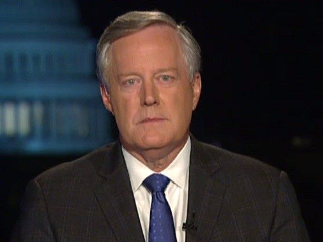 meadows:-'this-is-just-not-a-russian-hoax-—-this-is-a-ukrainian-hoax,-and-it's-not-even-by-a-legitimate-whistleblower'