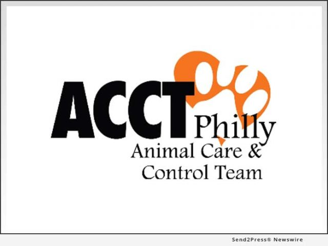 news:-acct-philly-hires-new-executive-director-and-announces-additional-updates-at-the-shelter