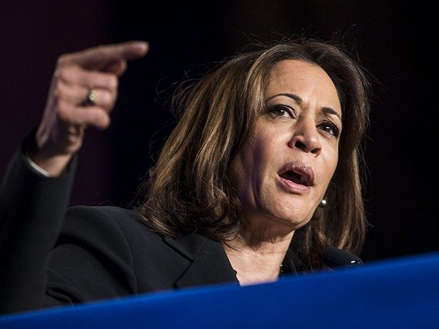 kamala-harris-responds-to-donald-trump-jr.:-'you-wouldn't-know-a-joke-if-one-raised-you'