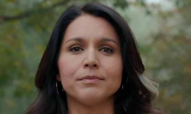 """""""toe-the-line-or-be-destroyed"""":-tulsi-gabbard-dismantles-establishment-'hit-job'-in-viral-video"""