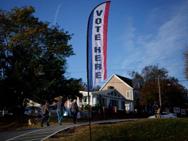 virginia-election-plagued-with-ballot-irregularities,-some-voters-turned-away