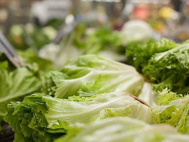 over-75k-pounds-of-salad-recalled-due-to-e.-coli-outbreak