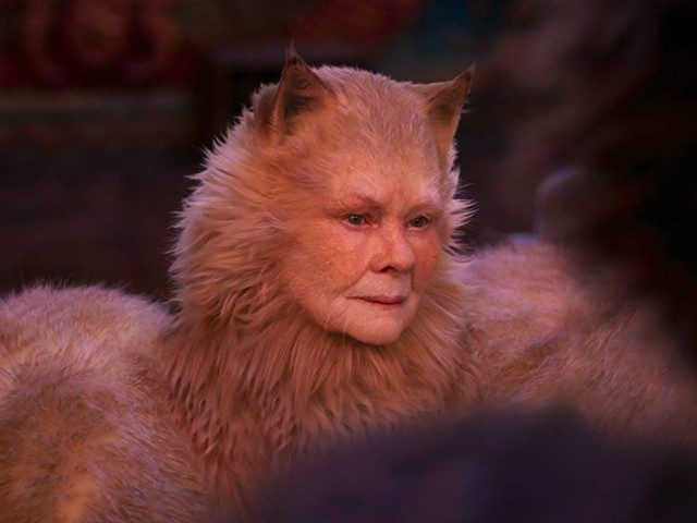 judi-dench:-my-'cats'-character-is-a-transgender-cat