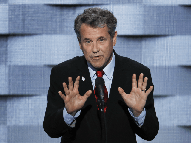 sherrod-brown-on-impeachment:-'fine'-to-hear-from-hunter-biden