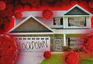 the-home-lockdown-survival-guide-–-staying-healthy,-sane,-&-solvent-during-the-covid-19-crisis