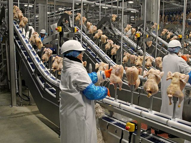 costco's-high-tech-meatpacking-plant-stays-open-as-virus-shuts-migrant-labor-plants