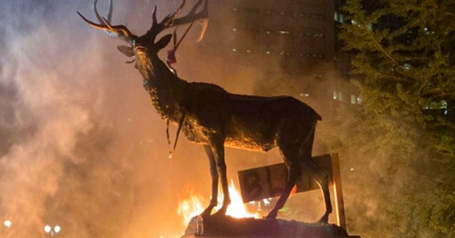 video:-rioters-set-elk-fountain-on-fire-in-portland