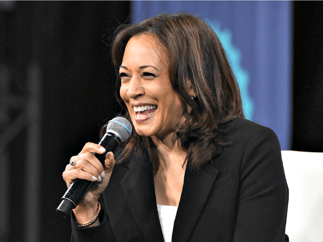 kamala-harris:-trump's-insults-meant-to-distract-from-his-'neglect,-negligence,-and-harm'