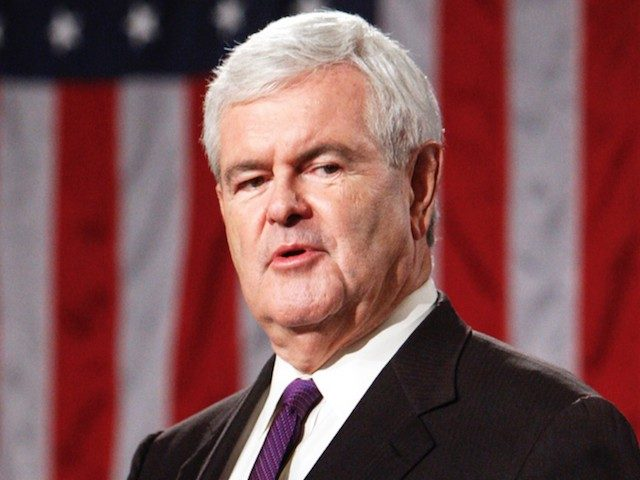 gingrich:-'beginning-to-sink-in'-how-'pro-criminal-and-anti-police-the-modern-democrats-have-become'