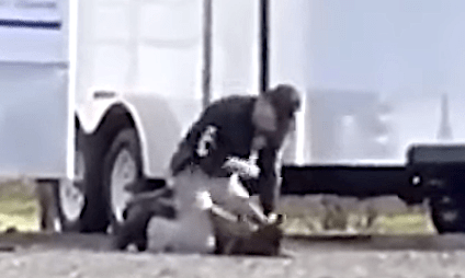 watch-–-dog-removed-from-trainer-after-video-shows-vacaville-police-officer-punching-k-9-partner