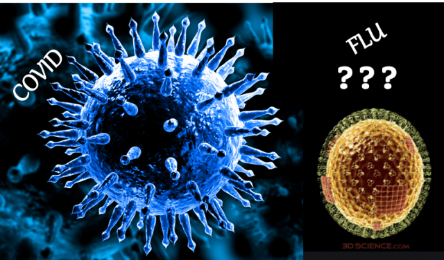 the-missing-flu-riddle:-'influenza-has-been-renamed-covid,'-maverick-epidemiologist-says