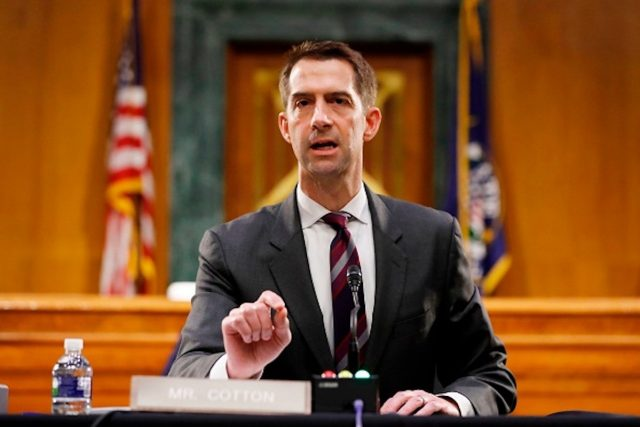 tom-cotton-took-a-lot-of-heat-on-three-gutsy-calls-in-the-last-year,-but-things-are-breaking-his-way
