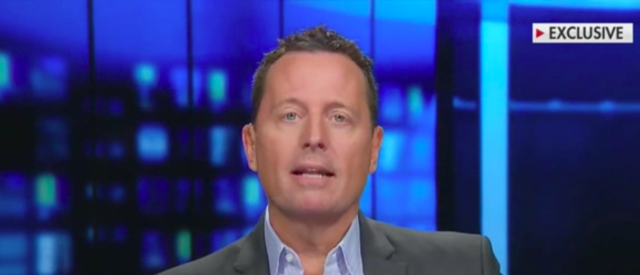 'this-is-like-living-behind-a-gated-community':-ric-grenell-says-pelosi-and-others-'are-loving'-a-fenced-capitol
