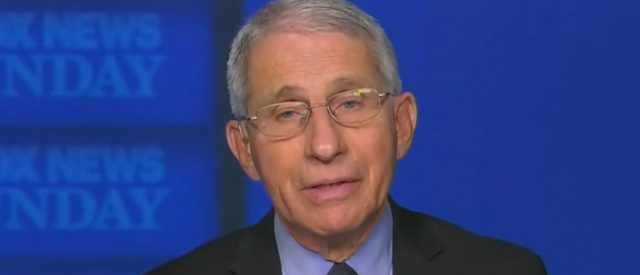 'it-would-make-all-the-difference-in-the-world':-fauci-urges-trump-to-encourage-supporters-to-get-vaccinated