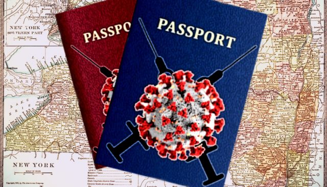 new-york-first-state-to-hop-on-covid-19-vaccine-passport-initiative-with-'excelsior-pass'