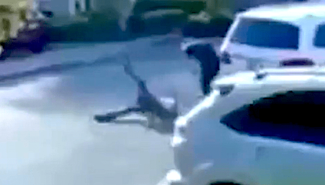 man-body-slams-robber-who-held-him-at-gunpoint,-video-shows