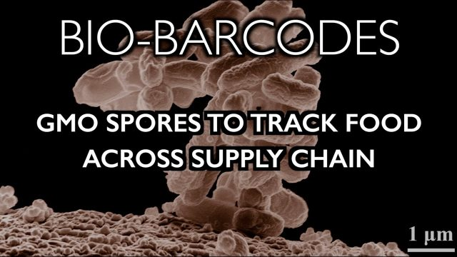 bio-barcodes:-gmo-spores-hidden-in-food-to-track-supply-chain