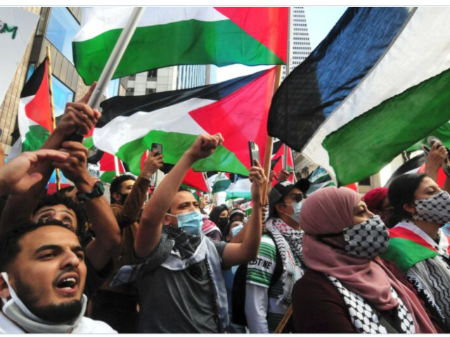 radical-soros-backed-group-supporting-legal-bail-fund-for-violent-pro-palestinian-'activists'
