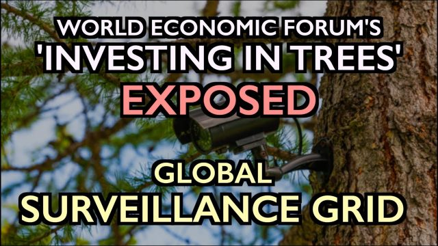 """wef's-""""invest-in-forests""""-exposed:-global-surveillance-grid"""
