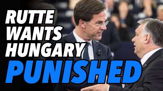 """dutch-pm-rutte-wants-to-bring-orban,-""""hungary-to-its-knees"""""""