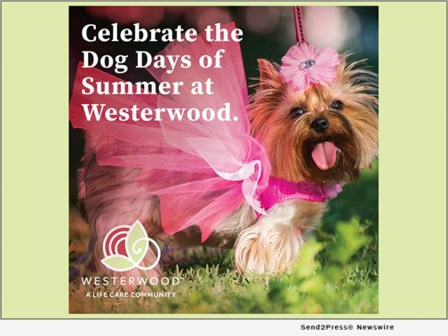 news:-westerwood-is-calling-all-pups-to-the-dog-days-of-summer-parade- -citizenwire