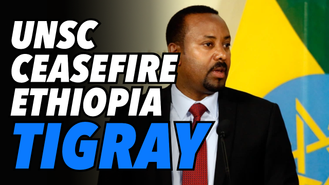 tplf-shocks-ethiopian-gov-with-decisive-military-win.-unsc-calls-for-ceasefire