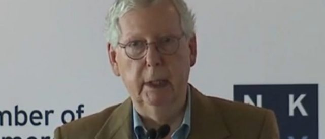 'stopping-the-worst'-—-mcconnell-explains-what-he-would-do-if-he-becomes-majority-leader-again