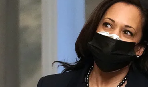 kamala-harris-comes-out-of-hiding,-gives-interview,-reminds-america-why-she-shouldn't-give-interviews