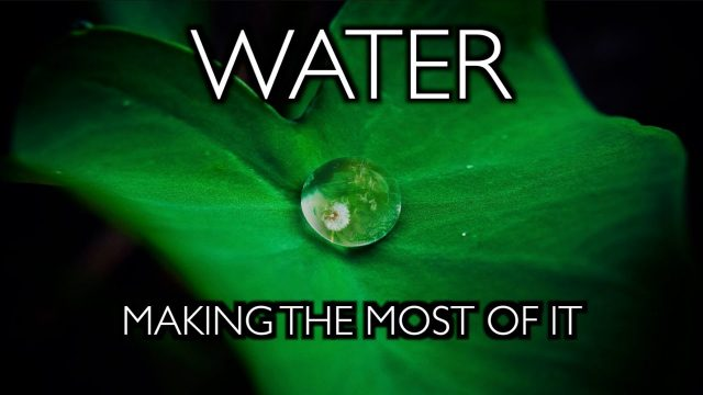 water:-making-the-most-of-it-–-growing-in-the-mega-drought