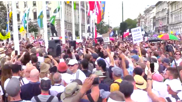 watch-live-–-london-covid-vaccination-protest